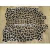 Бежевая шкура жирафа 25380