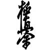 Секция каратэ Kyokushinkai. Мини-группа и индивидуально