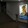 Реклама в Фитнес-клубах и Бизнес-центрах