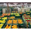 Оптовая продажа свежих овощей и фруктов.