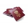 Паспорт Польши,  Финляндии,  Румынии.  Гражданство Евросоюза