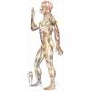 Китайский Цигун:   Меридианная Гимнастика на м.  Тульская,   г.  Москва (Регулярные занятия)