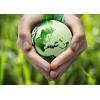 Проекты освоения лесов и их Экспертиза