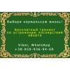 Бесплатный тренинг «Устранение последствий аборта»