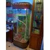 Продажа больших террариумов для игуан