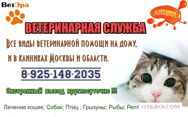 Ветеринарная помощь на дому и в клиниках.  Вызов (выезд)  ветеринара на дом от 500р.  По Москве и области