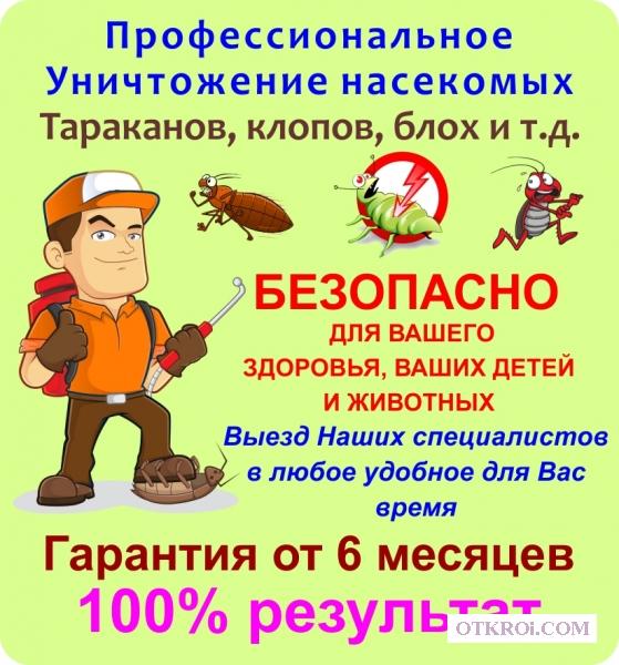 Уничтожение тараканов, клопов, насекомых
