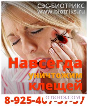 Уничтожение клопов, тараканов, блох, служба в Чехове-цена