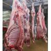 Мясо от 1 тн куриное,  говядина,  баранина.