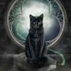 Магическая помощь без обмана,  все честно,  мощно и с гарантиями!  Я не бросаю тех,  кто обращается ко мне за помощью!