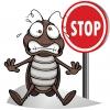 Избавим от тараканов!  Круглосуточно и с гарантией