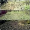 Вспашка земли мотоблоком.     Покос травы.     Стрижка газона.     Расчистка участков.