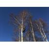 Удаление деревьев любой сложности,  расчистка участков,  дробление пней